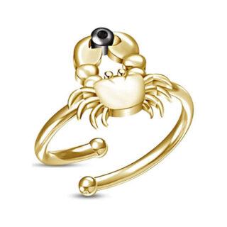 tienda online de anillos con signos zodiacales